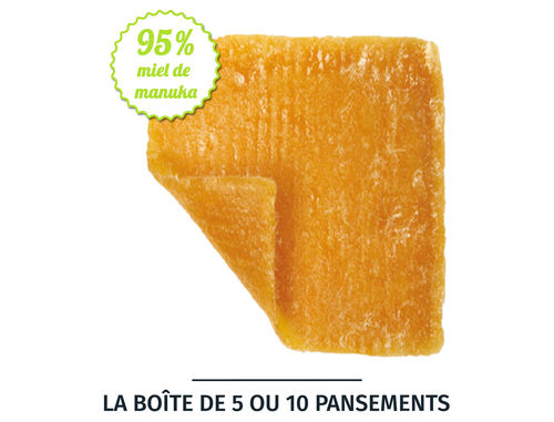 Pansement d'alginate adulte au miel de manuka